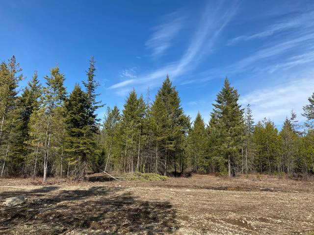 LT 4 BLK 1 Amulet Way, Rathdrum, ID 83858 (#20-4194) :: Kerry Green Real Estate