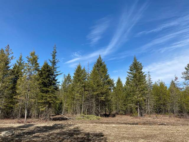 LT10 BLK 1 Amulet Way, Rathdrum, ID 83858 (#20-4195) :: Kerry Green Real Estate