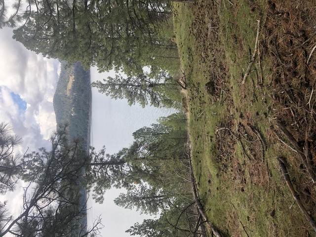 Crow's Nest Road, Harrison, ID 83833 (#20-4257) :: Team Brown Realty