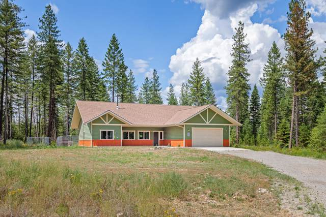 45 Leo Ln, Spirit Lake, ID 83869 (#20-430) :: Link Properties Group
