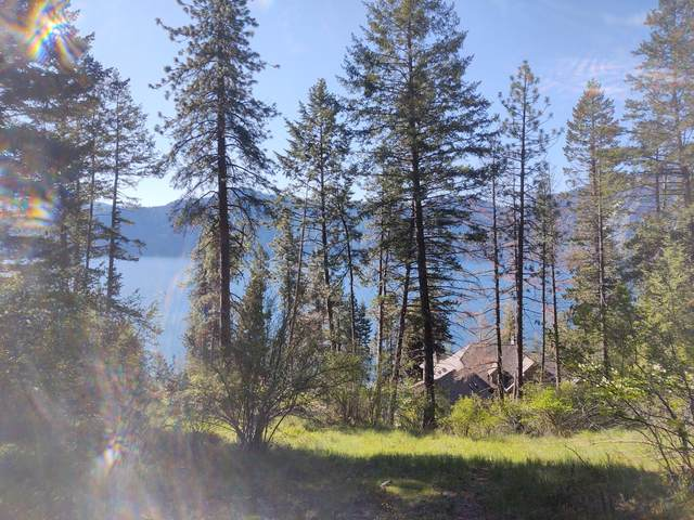Lt 21 Bk C Glacier Loop Rd, Bayview, ID 83803 (#20-4368) :: Embrace Realty Group