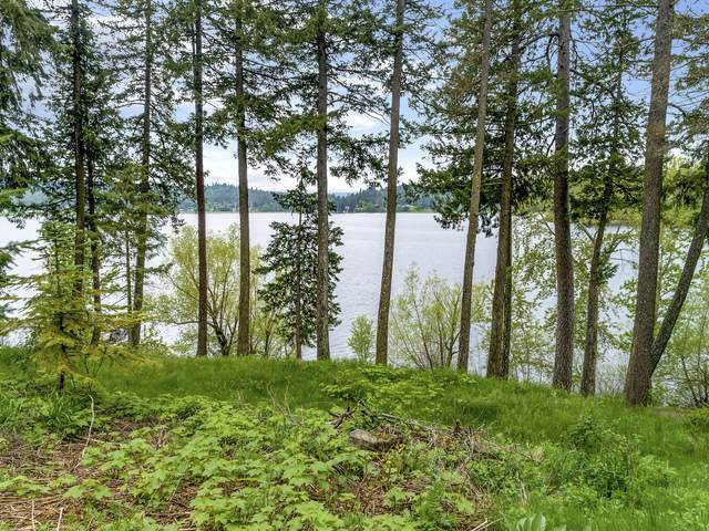 12435 N Wildwood Point Rd, Post Falls, ID 83854 (#20-4386) :: Prime Real Estate Group