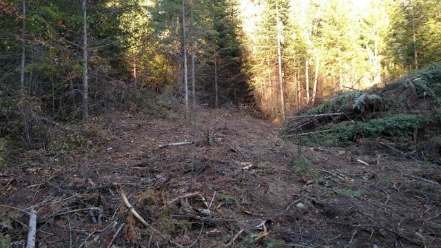 228 Olympic Lot 1, Sandpoint, ID 83864 (#20-4404) :: Five Star Real Estate Group