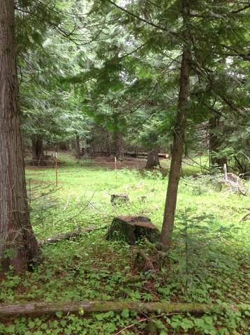 3794 S Elk Rd, Harrison, ID 83833 (#20-4422) :: CDA Home Finder