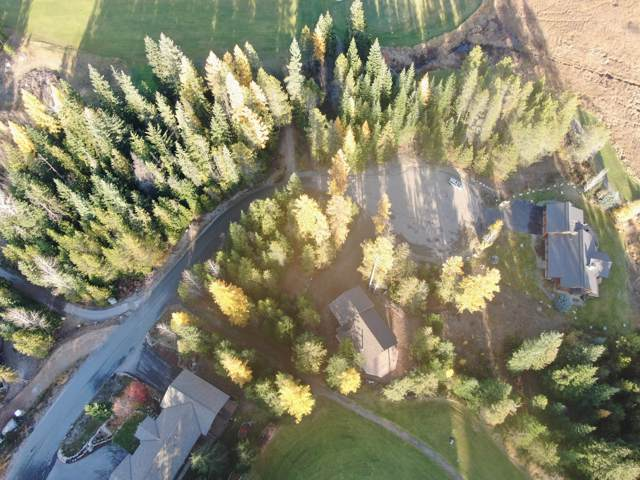 BLK 14 LO Long Drive, Priest Lake, ID 83856 (#20-462) :: Team Brown Realty