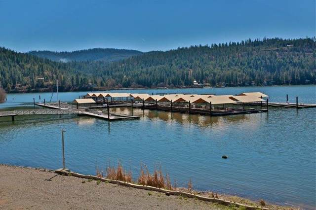 Lot 15&17 Sunset Shores Circle, Harrison, ID 83833 (#20-4645) :: ExSell Realty Group