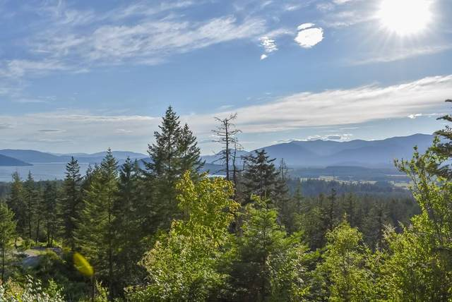 Lot 2 Green Monarch Lane, Sandpoint, ID 83864 (#20-4650) :: ExSell Realty Group