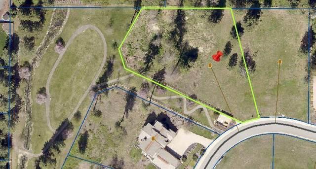 1288 E Bruin Loop, Hayden, ID 83835 (#20-4675) :: Team Brown Realty