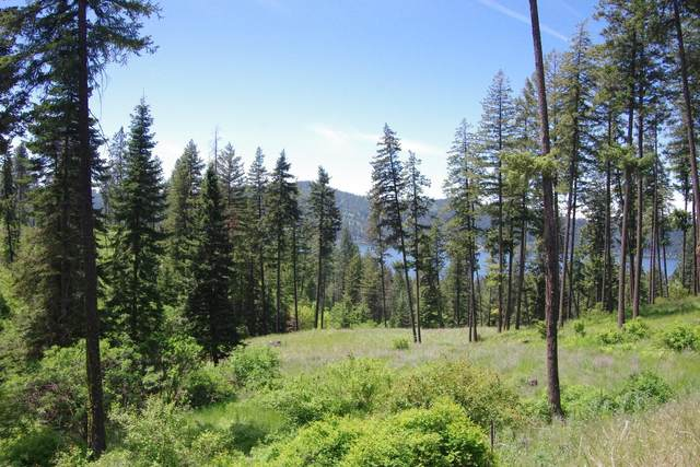 Lot 6 Blk1 Promontory Rd, Harrison, ID 83833 (#20-4872) :: CDA Home Finder
