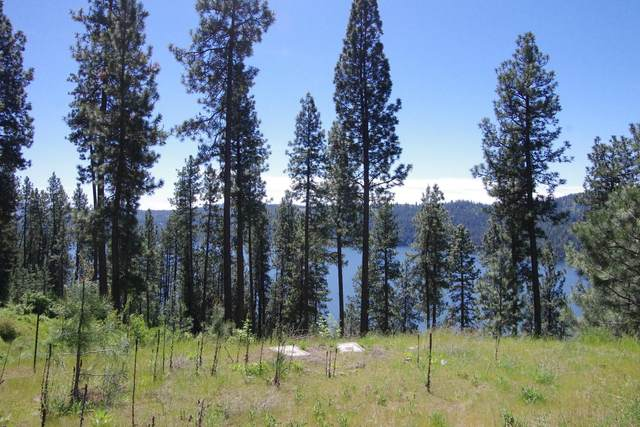 Lt 46 Blk3 Promontory Rd, Harrison, ID 83833 (#20-4878) :: Five Star Real Estate Group