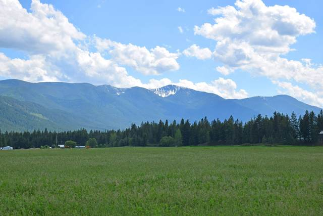 Lot 1 E Mountain View Rd, Moyie Springs, ID 83845 (#20-4927) :: Mandy Kapton | Windermere