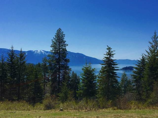 8 Lot Green Monarch Lane, Hope, ID 83836 (#20-4951) :: Mandy Kapton | Windermere