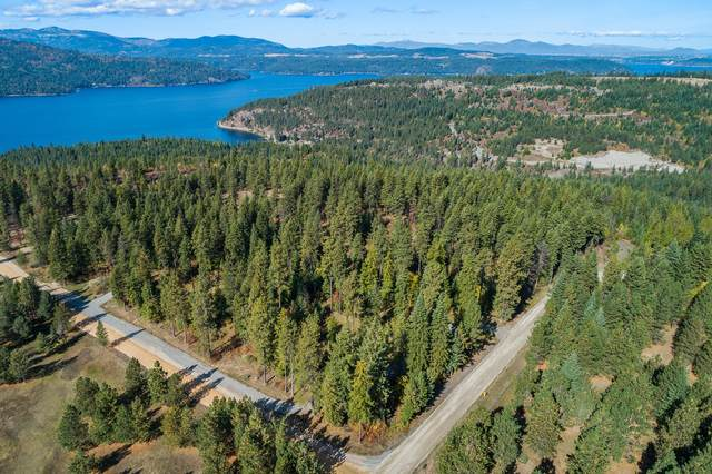 LT 4 Riddle Rd, Harrison, ID 83833 (#20-4955) :: ExSell Realty Group
