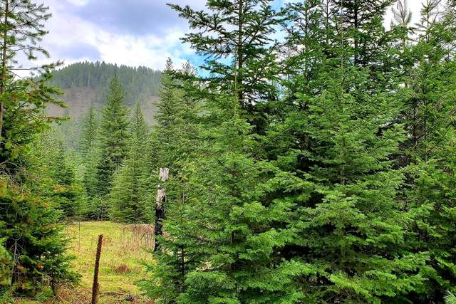 NNA Peterson Rd Lot 2, Priest River, ID 83856 (#20-4985) :: CDA Home Finder