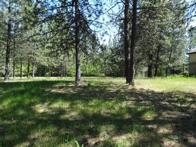 Enchantment Ln, Lt 4 Blk 3, Hayden, ID 83835 (#20-5000) :: CDA Home Finder