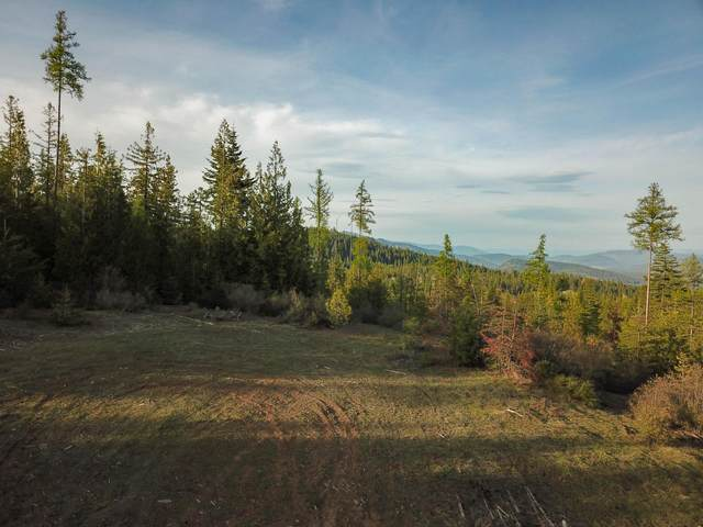 NNA High Meadows Drive, Priest River, ID 83856 (#20-5046) :: Link Properties Group