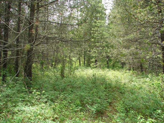 NNA Saddleback Lot 12, Naples, ID 83847 (#20-5062) :: Prime Real Estate Group