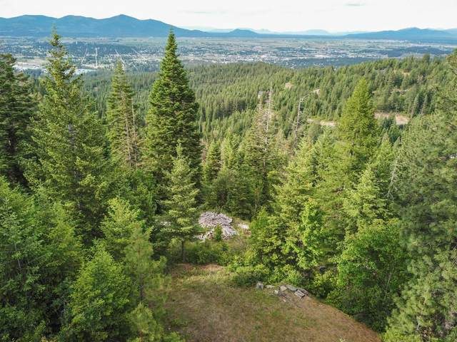 11876 W Monument Dr, Post Falls, ID 83854 (#20-5091) :: HergGroup Coeur D'Alene
