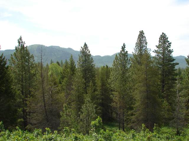 NNA Saddleback Dr. Lot 10, Naples, ID 83847 (#20-5097) :: Prime Real Estate Group