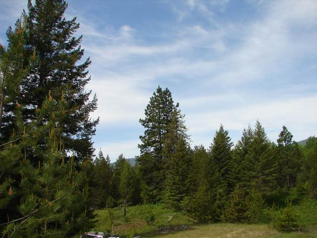 NNA Saddleback Dr Lot #11, Naples, ID 83847 (#20-5101) :: Prime Real Estate Group