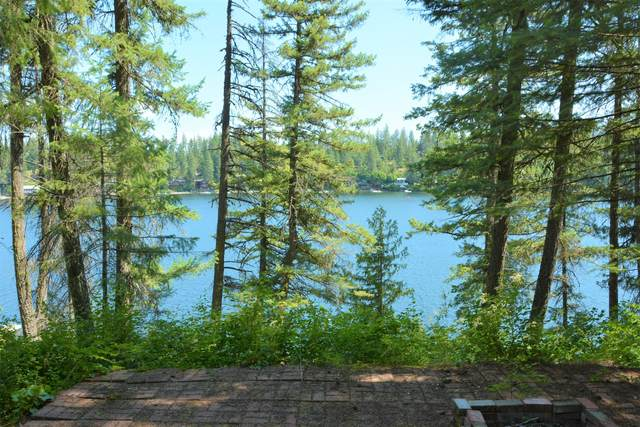 23189 W Lower Twin Lake Shr, Rathdrum, ID 83858 (#20-5180) :: ExSell Realty Group