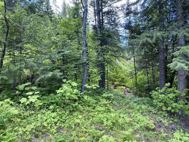 Lots 3,4,5 Magpie Dr Black Lake Shores, St. Maries, ID 83861 (#20-5633) :: ExSell Realty Group