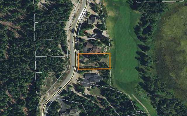 00 Long Dr, Priest Lake, ID 83856 (#20-5646) :: Northwest Professional Real Estate