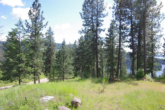 Lot 1 Hanson Rd, Harrison, ID 83833 (#20-5780) :: ExSell Realty Group