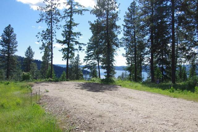 NNA Hanson Rd, Harrison, ID 83833 (#20-5782) :: Kerry Green Real Estate