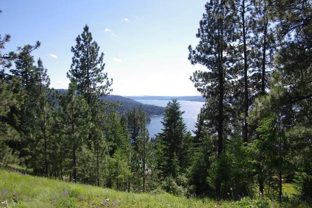 Lot 123 Hanson Rd, Harrison, ID 83833 (#20-5786) :: Keller Williams Realty Coeur d' Alene