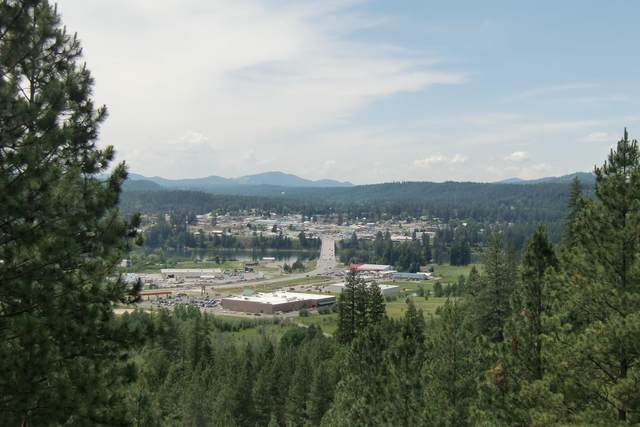 Lot 11&12 W Diamond Heights Rd, Oldtown, ID 83822 (#20-5906) :: Coeur d'Alene Area Homes For Sale