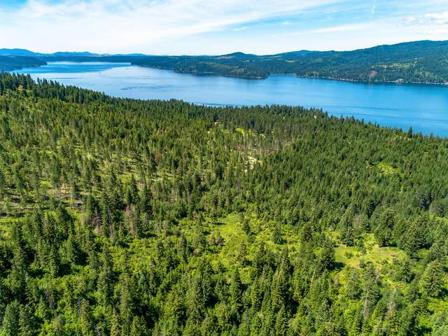 Lot C S Whistle Rd, Harrison, ID 83833 (#20-6078) :: Coeur d'Alene Area Homes For Sale