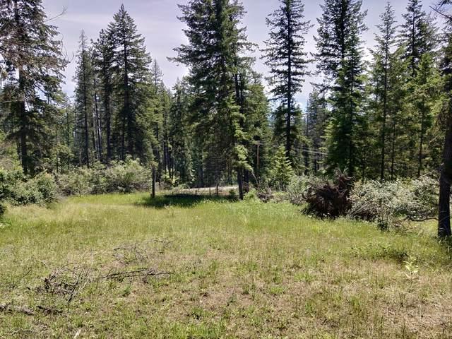 Eureka Rd, Sagle, ID 83860 (#20-6190) :: Northwest Professional Real Estate