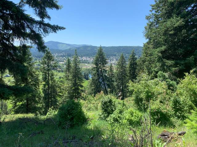 NKA W. Meadowhurst Rd., St. Maries, ID 83861 (#20-6223) :: Coeur d'Alene Area Homes For Sale