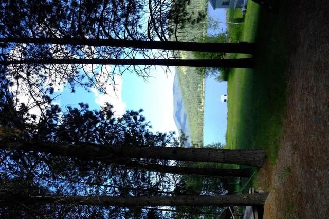 NNA Loon Ln, Cocolalla, ID 83813 (#20-6264) :: Kerry Green Real Estate