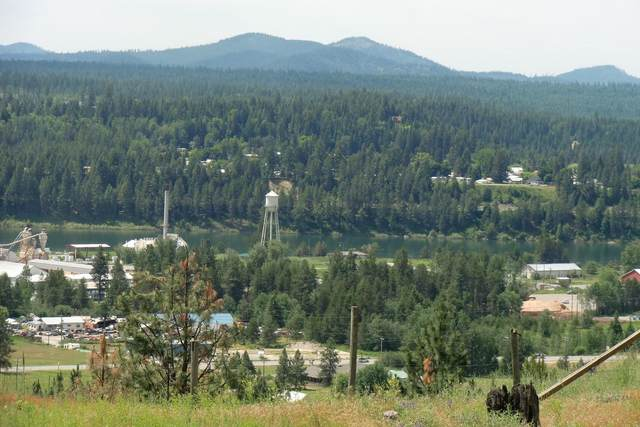 Lot 12 W Diamond Heights Rd, Oldtown, ID 83822 (#20-6286) :: Northwest Professional Real Estate