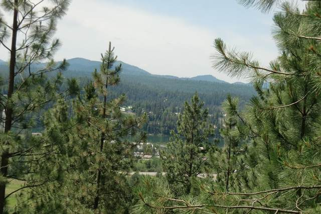 Lot 11 W Diamond Heights Rd, Oldtown, ID 83822 (#20-6287) :: Northwest Professional Real Estate