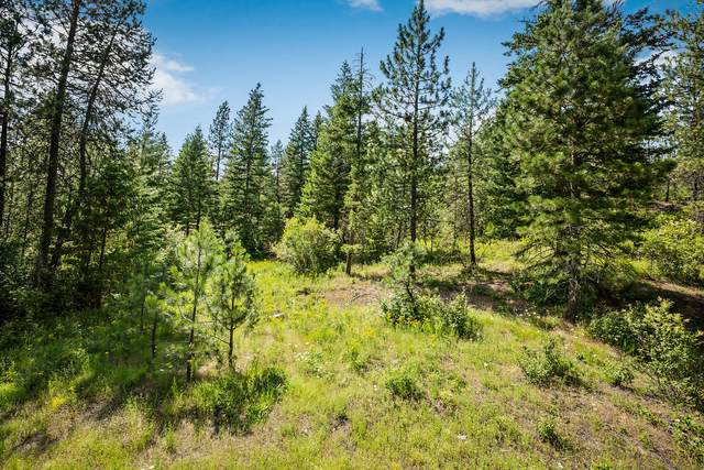 nna Roberts Ridge Rd, Cocolalla, ID 83813 (#20-6329) :: Prime Real Estate Group