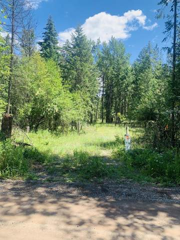 Lot 67 Mountain View Rd, Clark Fork, ID 83811 (#20-6596) :: Mall Realty Group