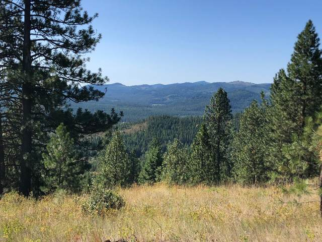 NNA Hidden Valley Rd Parcel 10, Spirit Lake, ID 83869 (#20-7146) :: Mandy Kapton | Windermere