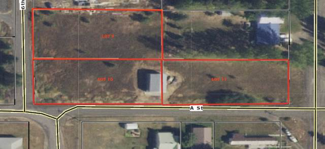 LOTS N 9,10,11 : SEDLER ADDITION, Plummer, ID 83851 (#20-715) :: Prime Real Estate Group