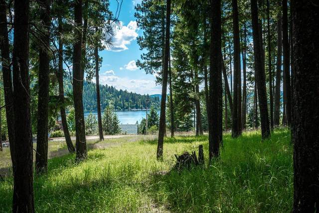 Lot 41 Sunset Shores Cir, Harrison, ID 83833 (#20-7297) :: Link Properties Group