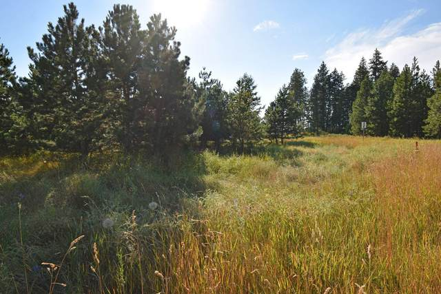 Lot 1 E Mountain View Rd, Moyie Springs, ID 83845 (#20-7456) :: Northwest Professional Real Estate