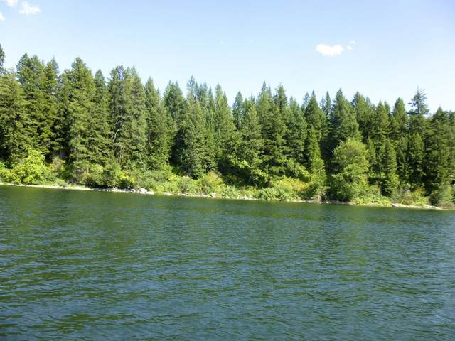 N.K.A. Waterfront Lot, Spirit Lake, ID 83869 (#20-7525) :: Mandy Kapton | Windermere