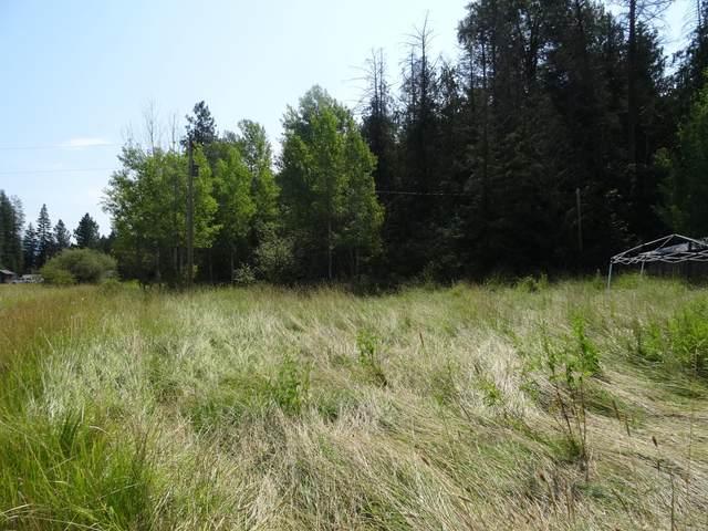 NNA 384&44 Cottonwood, Priest River, ID 83856 (#20-7571) :: Mandy Kapton   Windermere
