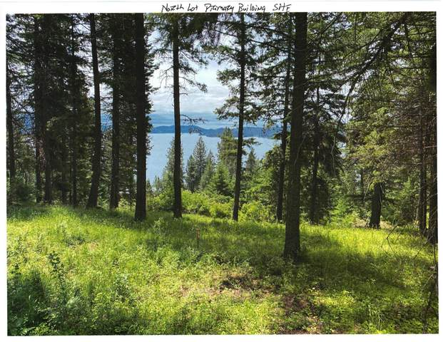 TBD North Lot Driftwood Heights Dr., Harrison, ID 83833 (#20-7722) :: Team Brown Realty