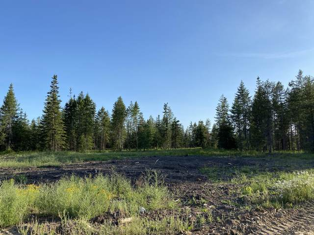 LT 2 BLK 2 Amulet Way, Rathdrum, ID 83858 (#20-7736) :: Embrace Realty Group