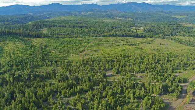 Parcel D Sportsman Rd, St. Maries, ID 83861 (#20-7917) :: Kerry Green Real Estate