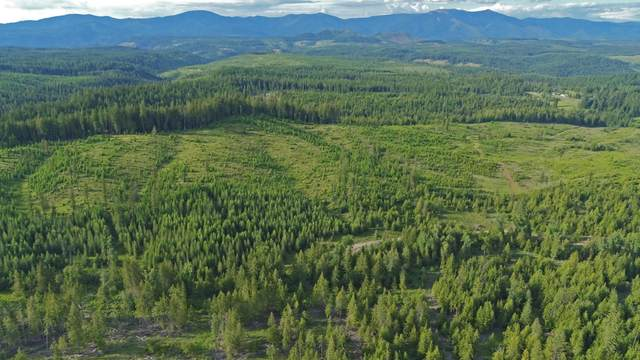 Parcel E Sportsman Rd, St. Maries, ID 83861 (#20-7918) :: Kerry Green Real Estate