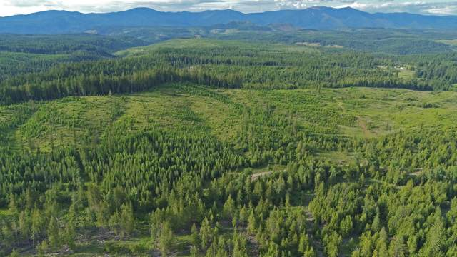 Parcel G Sportsman Rd, St. Maries, ID 83861 (#20-7924) :: Kerry Green Real Estate